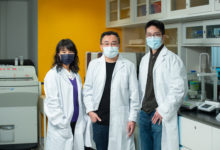 Photo of HKBU researchers develop dual-targeting drug for EBV-related cancers