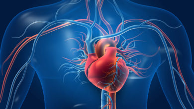 Photo of Using AI to speed up diagnosis of cardiovascular diseases