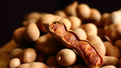 Photo of NTU Singapore scientists convert tamarind shells into an energy source for vehicles